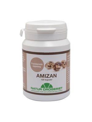 Amizan (vagtelæg)