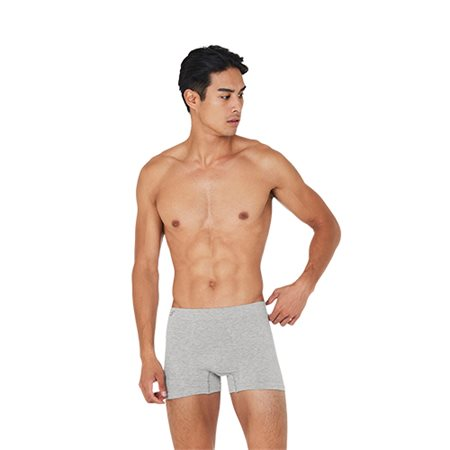 Boxer shorts lysegrå str. XL