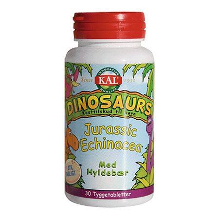 Billede af DinoSaurs Echinacea tygge børn