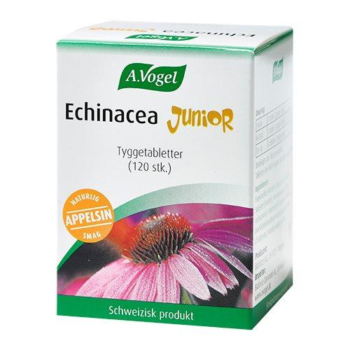 Billede af Echinacea Junior