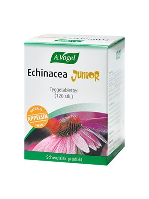 Echinacea Junior