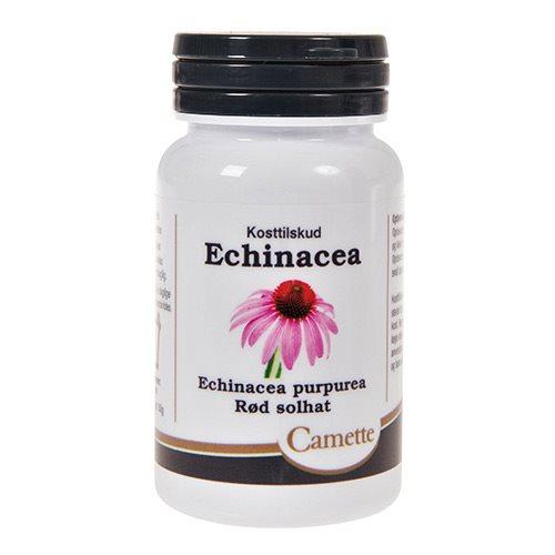Billede af Echinacea