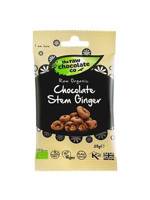 Ingefær m. rå chokolade Ø Snack pack