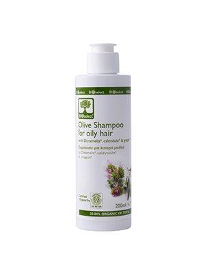 Oliven shampo fedtet hår  Bioselect BioEco